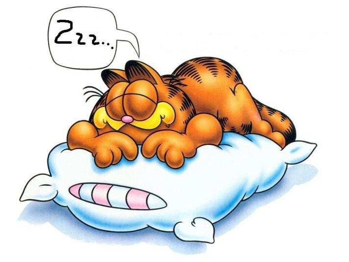 garfield_free_sleep